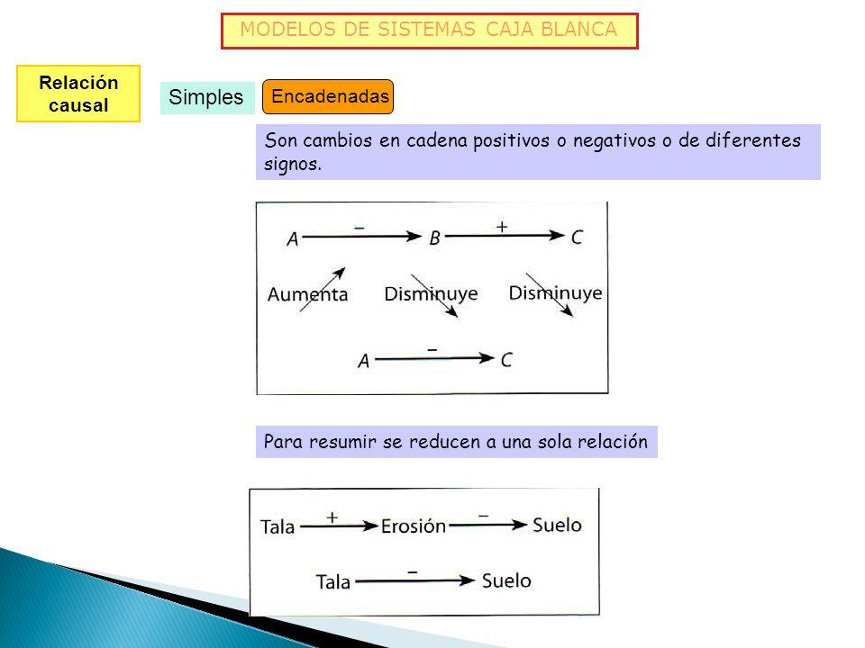 MODELOS DE SISTEMAS CAJA BLANCA Relación causal Simples Directas En las que un aumento de A causa un aumento de B y una disminución de A causa una dis