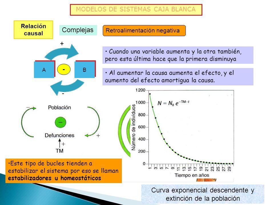 MODELOS DE SISTEMAS CAJA BLANCA Relación causal Complejas Retroalimentación positiva Bucles de realimentación o retroalimentación: la acción de un ele