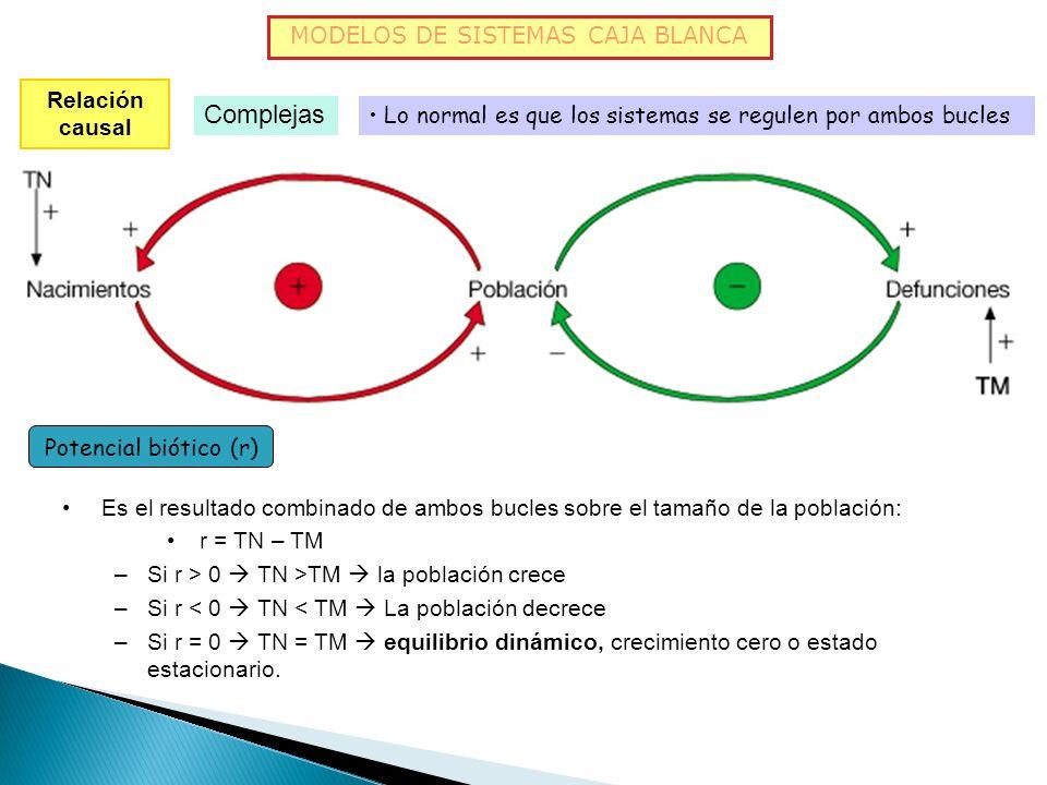 MODELOS DE SISTEMAS CAJA BLANCA Relación causal Complejas Retroalimentación negativa BA + - - Cuando una variable aumenta y la otra también, pero esta