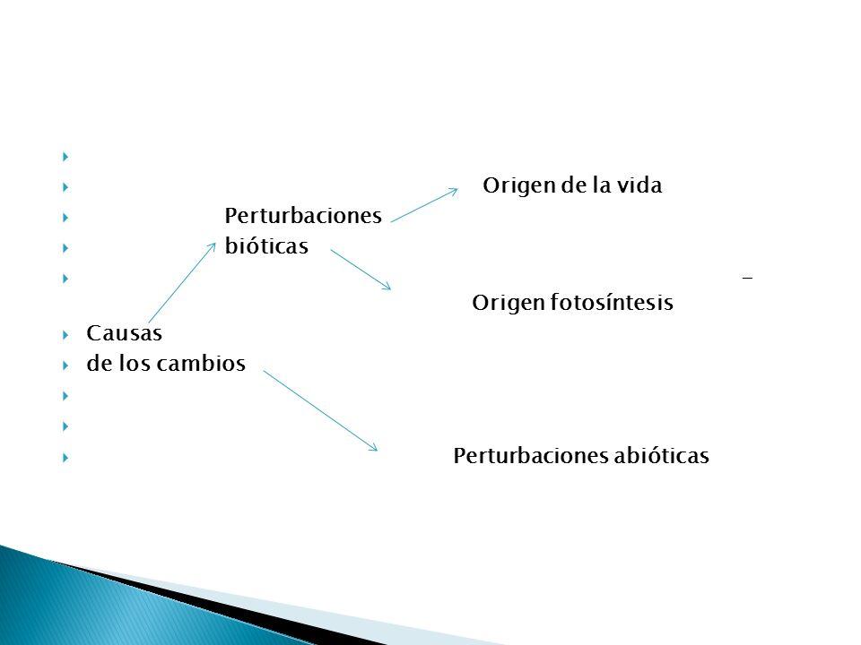 Tipos de perturbaciones o cambios + Origen de la tierra__________4.500.10 6 años Desde origen Cataclismos geológicos a la Cambios atmosféricos Actuali