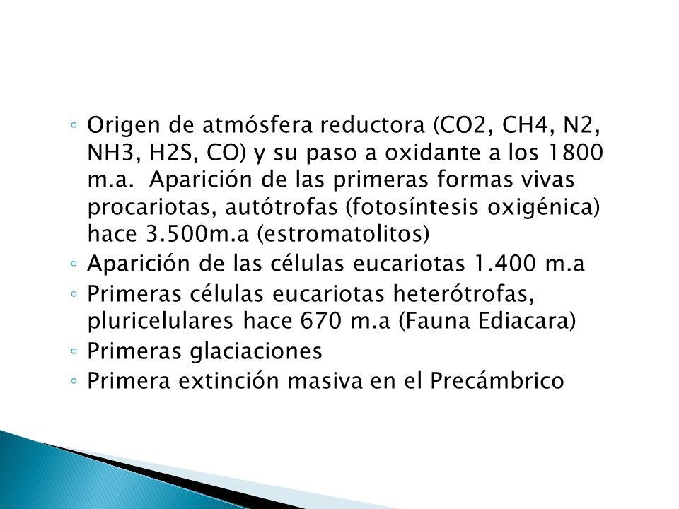 EONES: 1. HADEANO 4.600 a 4.000 m.a 2. ARCAICO 4000 a 2.500 m.a 3. PROTEROZOICO 2500 a 570 m.a ACONTECIMIENTOS: Origen por acreción Formación Pangea I
