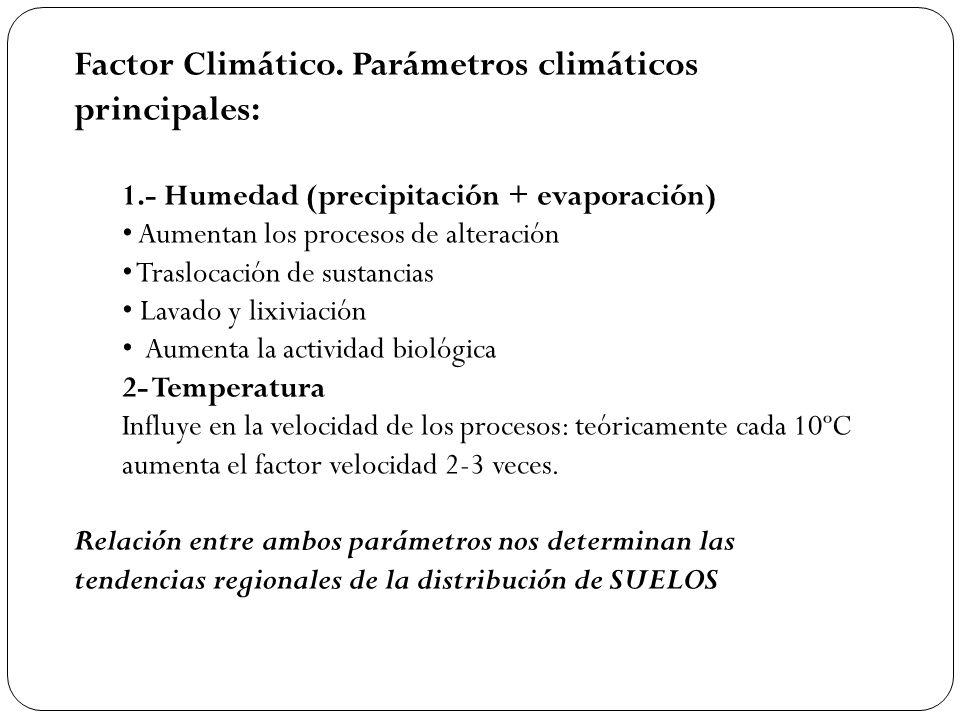 Factor Climático. Parámetros climáticos principales: 1.- Humedad (precipitación + evaporación) Aumentan los procesos de alteración Traslocación de sus
