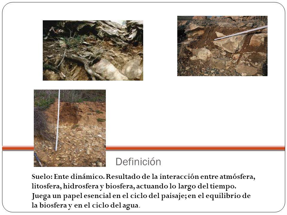 La erosión es el arranque de materiales por la acción de los agentes geológicos externos.
