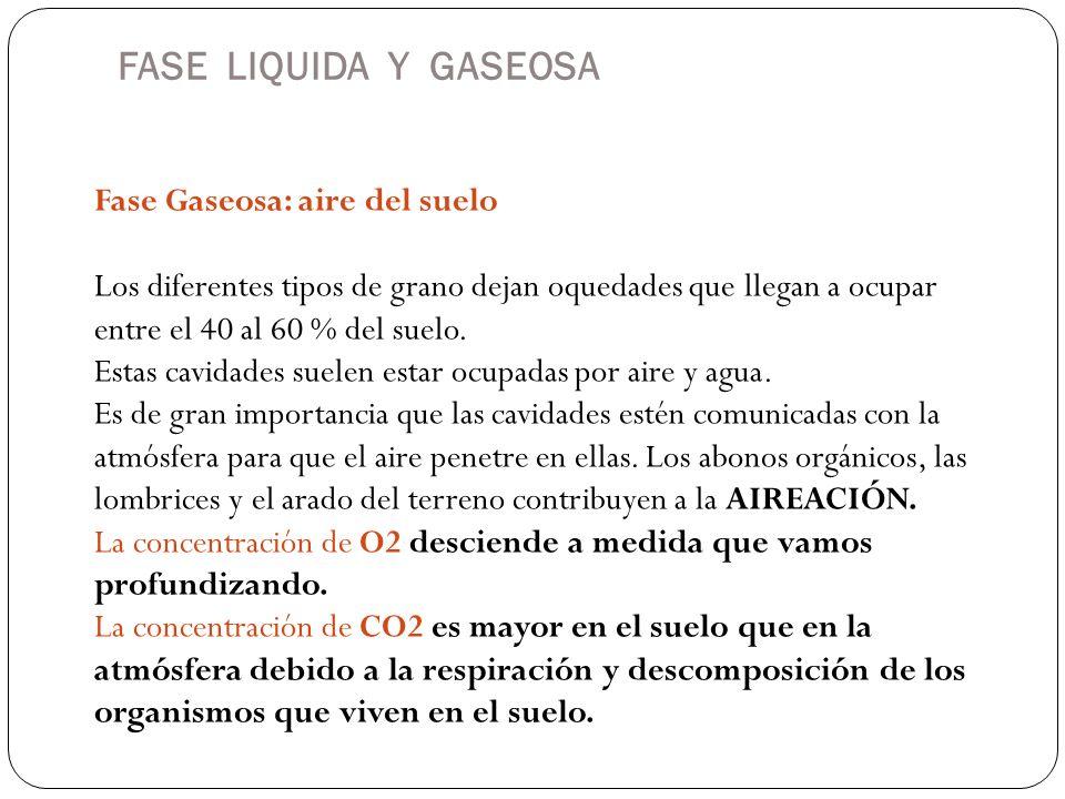 FASE LIQUIDA Y GASEOSA Fase Gaseosa: aire del suelo Los diferentes tipos de grano dejan oquedades que llegan a ocupar entre el 40 al 60 % del suelo. E