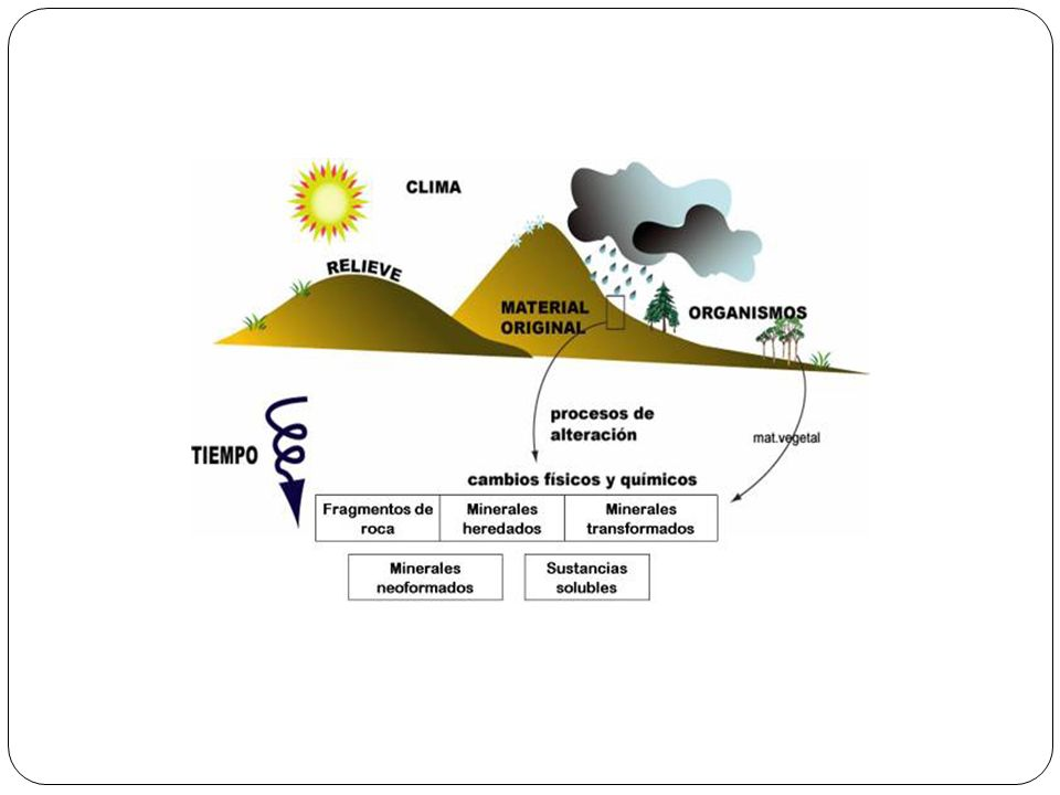 EROSIONABILIDAD: depende de.- Inclinación de la pendiente..- Estado de la cubierta vegetal..- Tipo de terreno.
