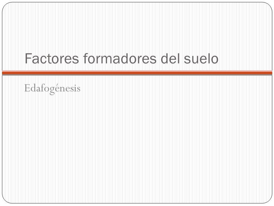 TIPOS DE SUELOS TIPO DE SUELOCaracterísticas AZONALES Inmaduros o brutos.