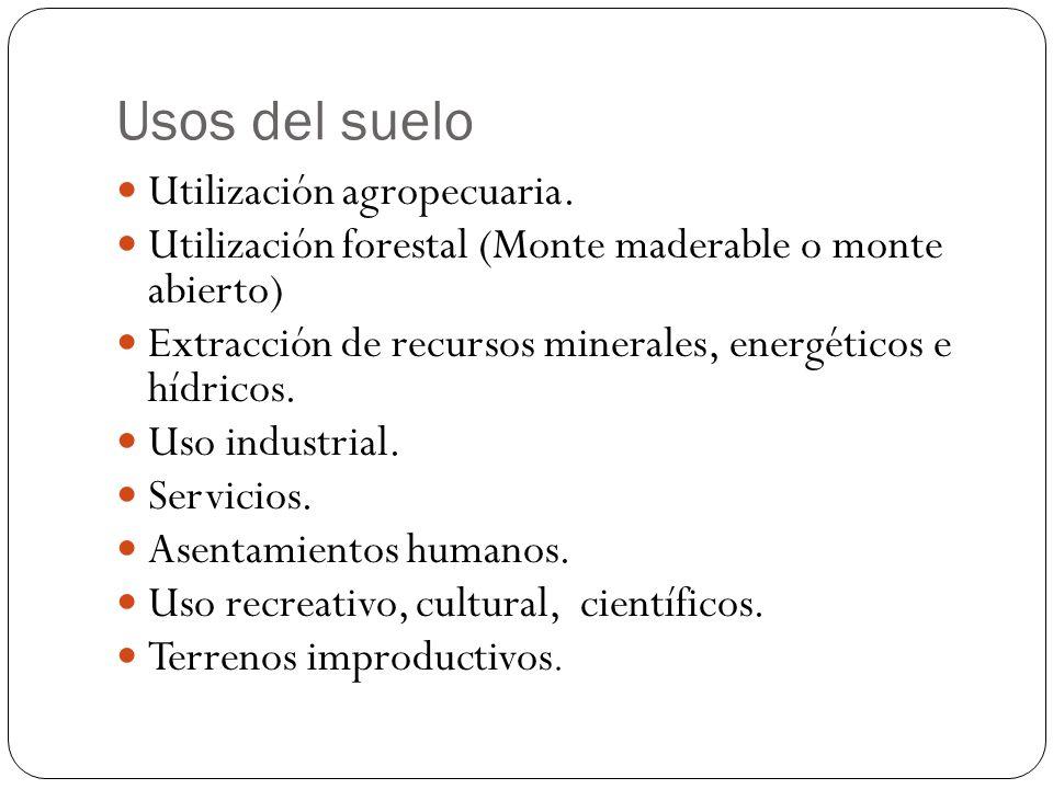 Usos del suelo Utilización agropecuaria. Utilización forestal (Monte maderable o monte abierto) Extracción de recursos minerales, energéticos e hídric