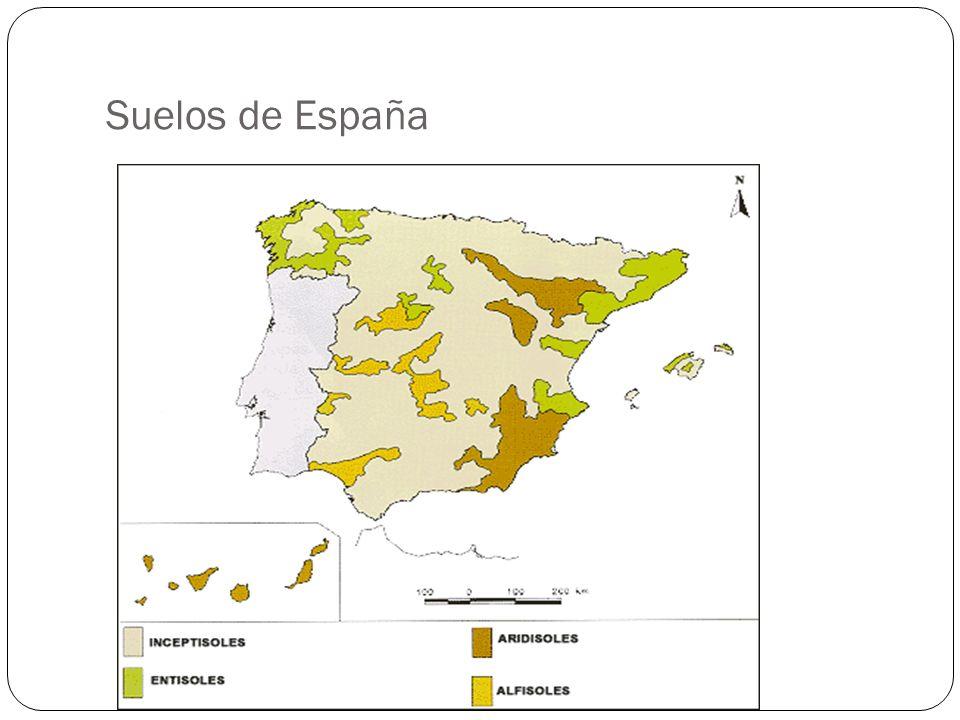 Suelos de España
