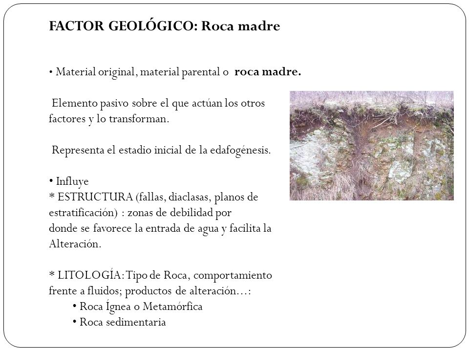 FACTOR GEOLÓGICO: Roca madre Material original, material parental o roca madre. Elemento pasivo sobre el que actúan los otros factores y lo transforma