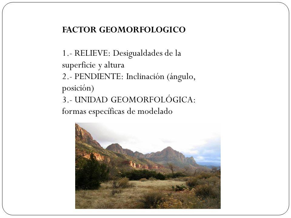 FACTOR GEOMORFOLOGICO 1.- RELIEVE: Desigualdades de la superficie y altura 2.- PENDIENTE: Inclinación (ángulo, posición) 3.- UNIDAD GEOMORFOLÓGICA: fo
