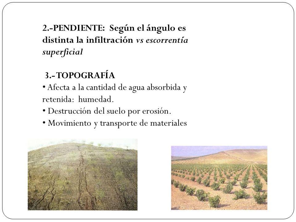 Anegamiento y saturación húmeda Por pérdida de posidad y capacidad de retención hídrica del suelo, especialmente por abuso de fertlizantes inorgánicos.