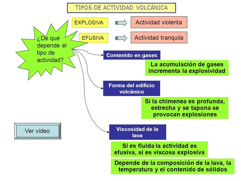 TIPOS DE ACTIVIDAD VOLCÁNICA EXPLOSIVA Actividad violenta EFUSIVA Actividad tranquila ¿De qué depende el tipo de actividad? Contenido en gases La acum