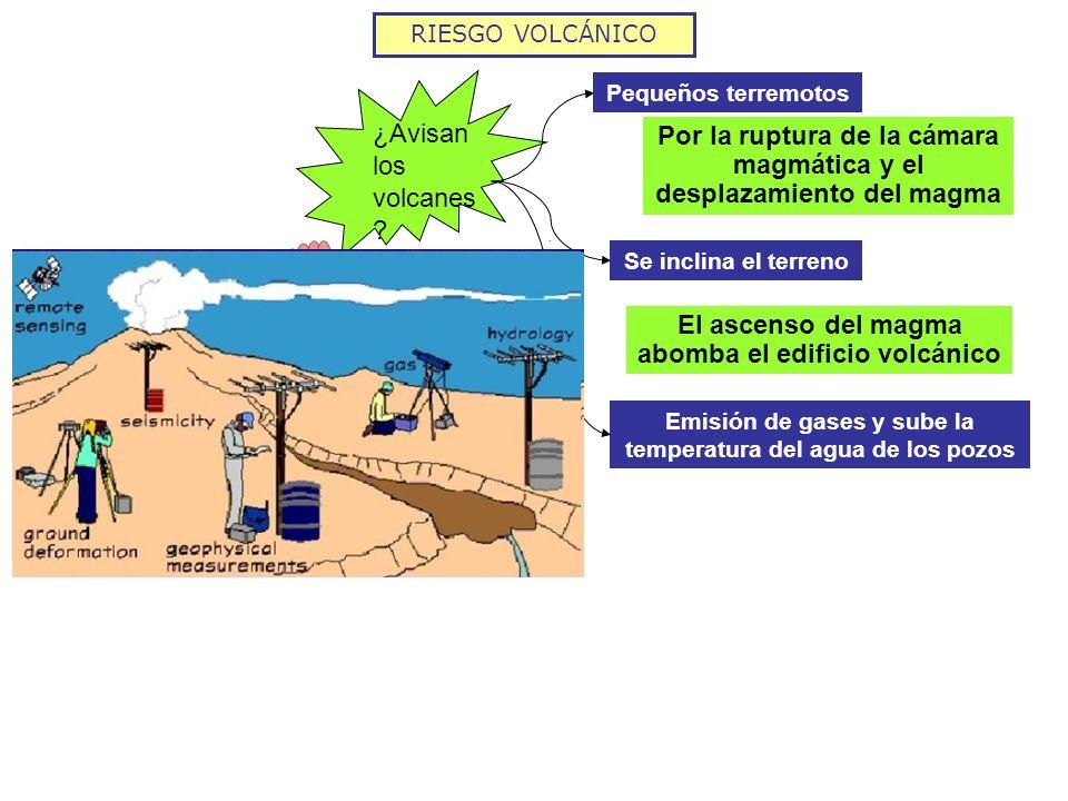 RIESGO VOLCÁNICO ¿Avisan los volcanes ? Pequeños terremotos Por la ruptura de la cámara magmática y el desplazamiento del magma Se inclina el terreno