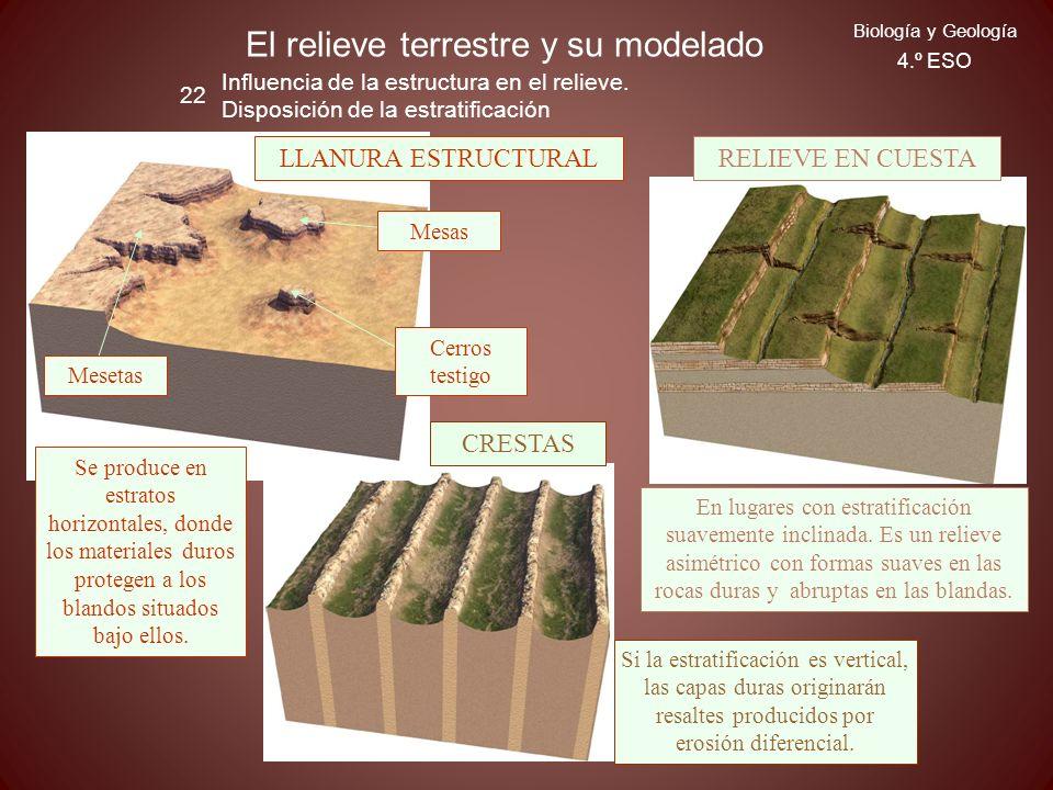 El relieve terrestre y su modelado 22 Biología y Geología 4.º ESO Influencia de la estructura en el relieve. Disposición de la estratificación RELIEVE