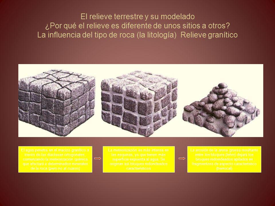 El relieve terrestre y su modelado ¿Por qué el relieve es diferente de unos sitios a otros? La influencia del tipo de roca (la litología) Relieve gran