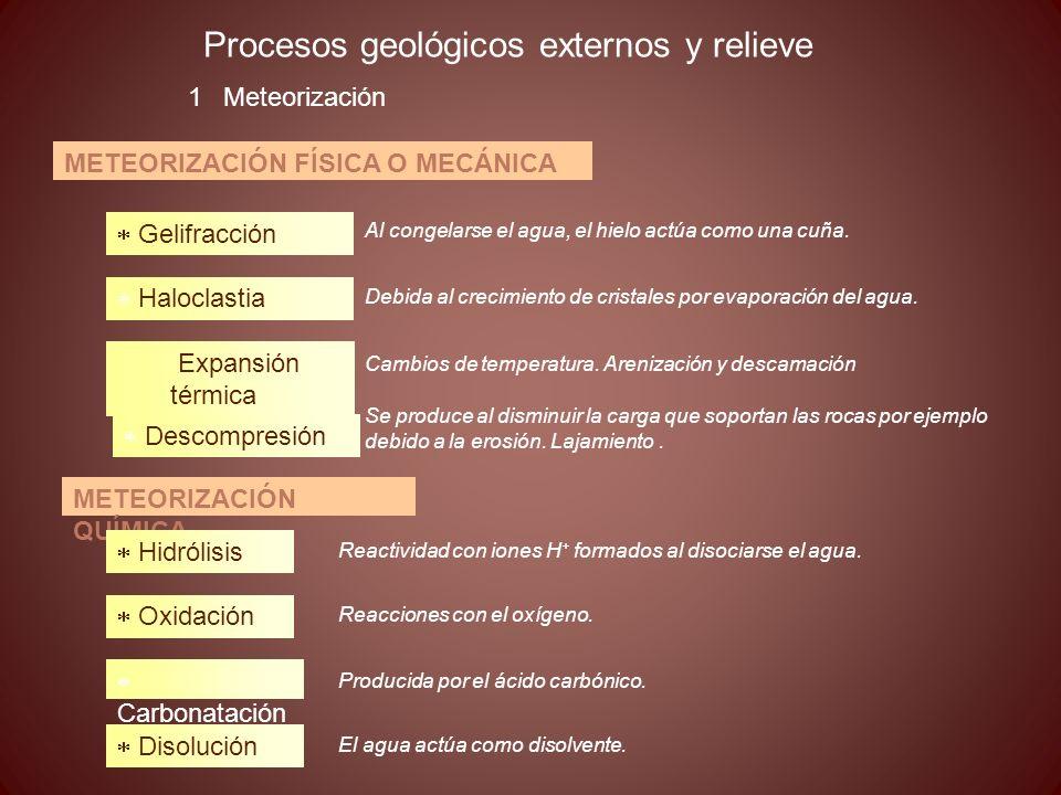 Procesos geológicos externos y relieve 1Meteorización METEORIZACIÓN FÍSICA O MECÁNICA Gelifracción Haloclastia Expansión térmica Descompresión METEORI