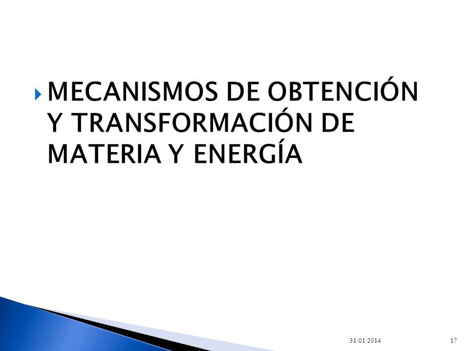 MECANISMOS DE OBTENCIÓN Y TRANSFORMACIÓN DE MATERIA Y ENERGÍA 31/01/201417
