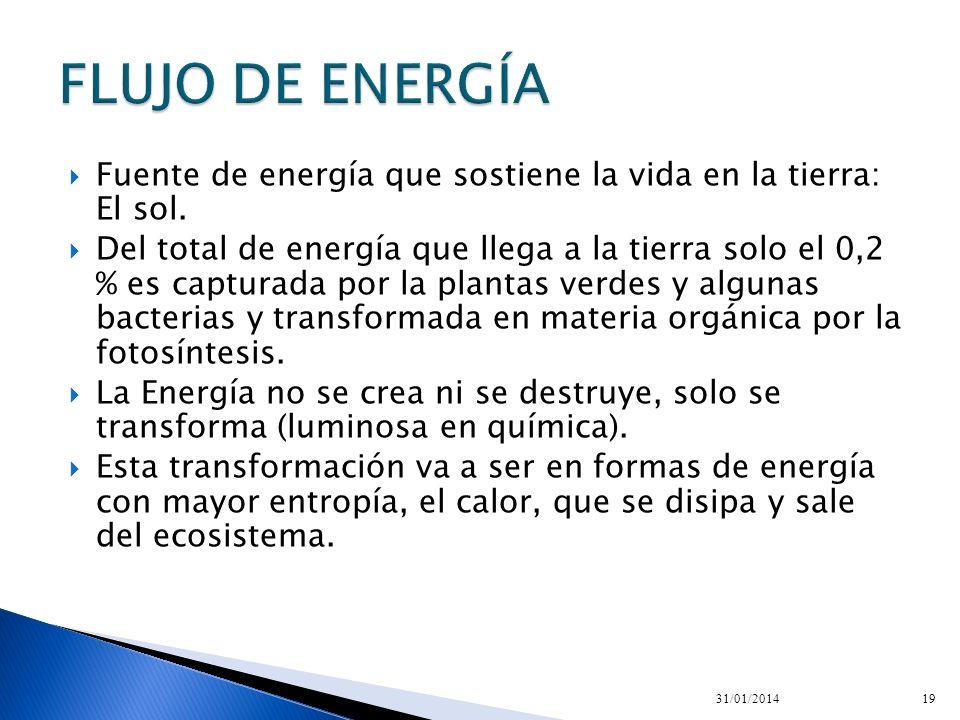 Fuente de energía que sostiene la vida en la tierra: El sol. Del total de energía que llega a la tierra solo el 0,2 % es capturada por la plantas verd