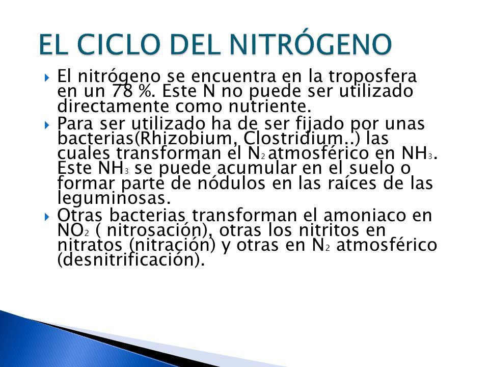 El nitrógeno se encuentra en la troposfera en un 78 %. Este N no puede ser utilizado directamente como nutriente. Para ser utilizado ha de ser fijado