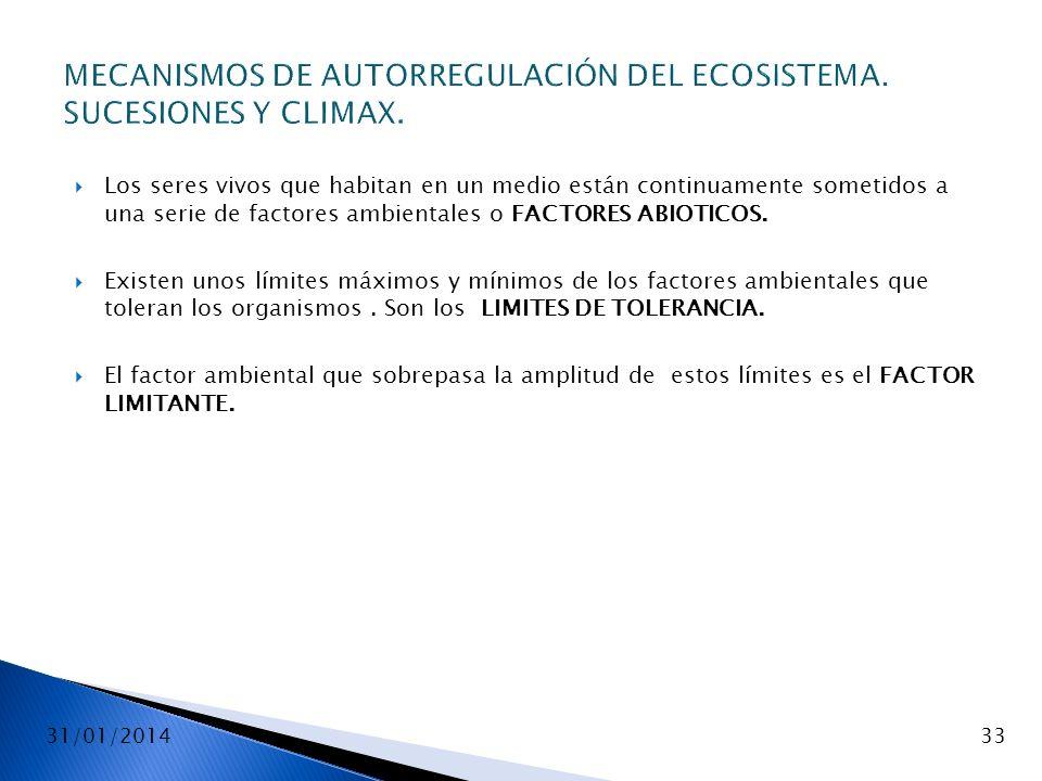 31/01/201433 MECANISMOS DE AUTORREGULACIÓN DEL ECOSISTEMA. SUCESIONES Y CLIMAX. Los seres vivos que habitan en un medio están continuamente sometidos