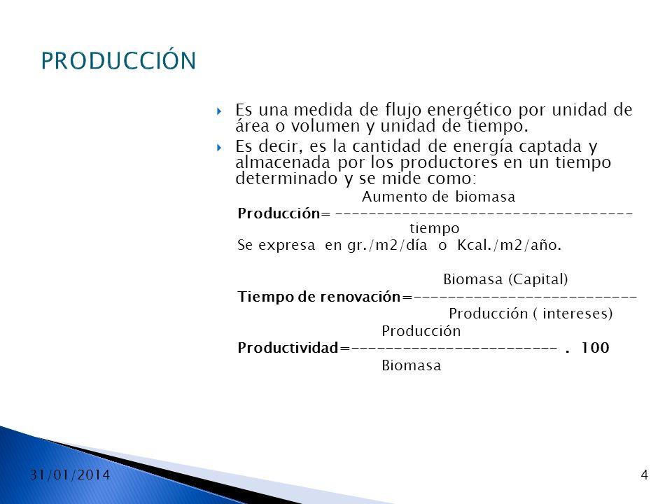 31/01/20144 PRODUCCIÓN Es una medida de flujo energético por unidad de área o volumen y unidad de tiempo. Es decir, es la cantidad de energía captada
