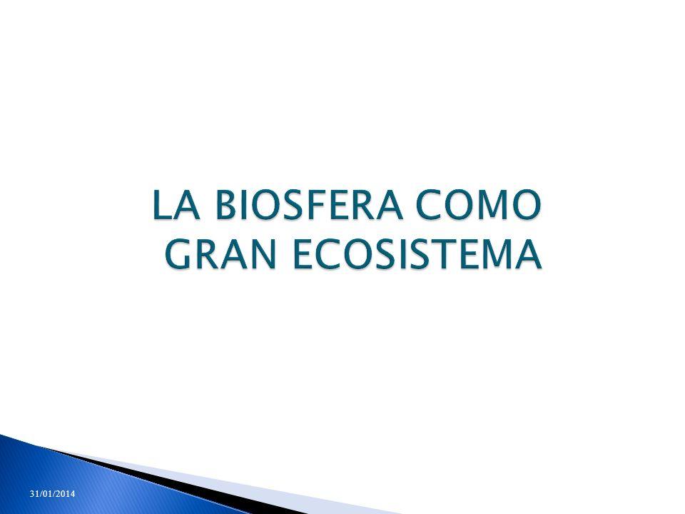 LA BIOSFERA COMO GRAN ECOSISTEMA 31/01/201460