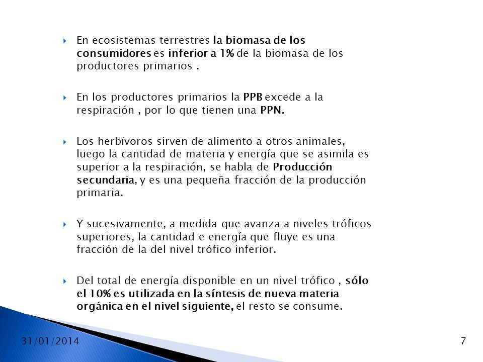 31/01/20147 En ecosistemas terrestres la biomasa de los consumidores es inferior a 1% de la biomasa de los productores primarios. En los productores p