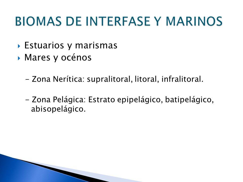 Estuarios y marismas Mares y océnos - Zona Nerítica: supralitoral, litoral, infralitoral. - Zona Pelágica: Estrato epipelágico, batipelágico, abisopel