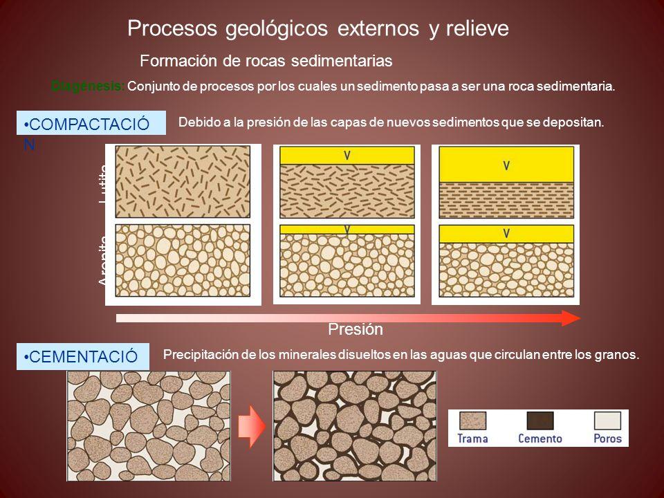 Procesos geológicos externos y relieve Formación de rocas sedimentarias Diagénesis: Conjunto de procesos por los cuales un sedimento pasa a ser una ro
