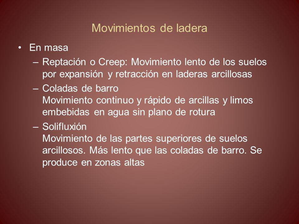Movimientos de ladera En masa –Reptación o Creep: Movimiento lento de los suelos por expansión y retracción en laderas arcillosas –Coladas de barro Mo