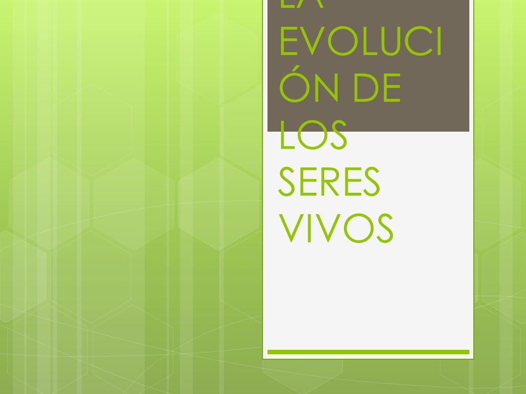 TEMA 5: LA EVOLUCI ÓN DE LOS SERES VIVOS