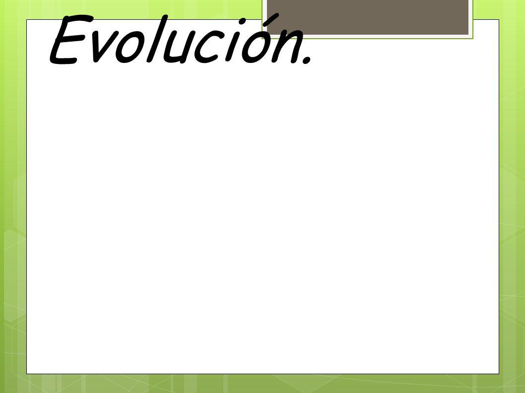 3. Pruebas de la Evolución.