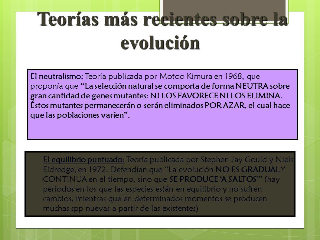 El equilibrio puntuado: Teoría publicada por Stephen Jay Gould y Niels Eldredge, en 1972. Defendían que La evolución NO ES GRADUAL Y CONTINUA en el ti