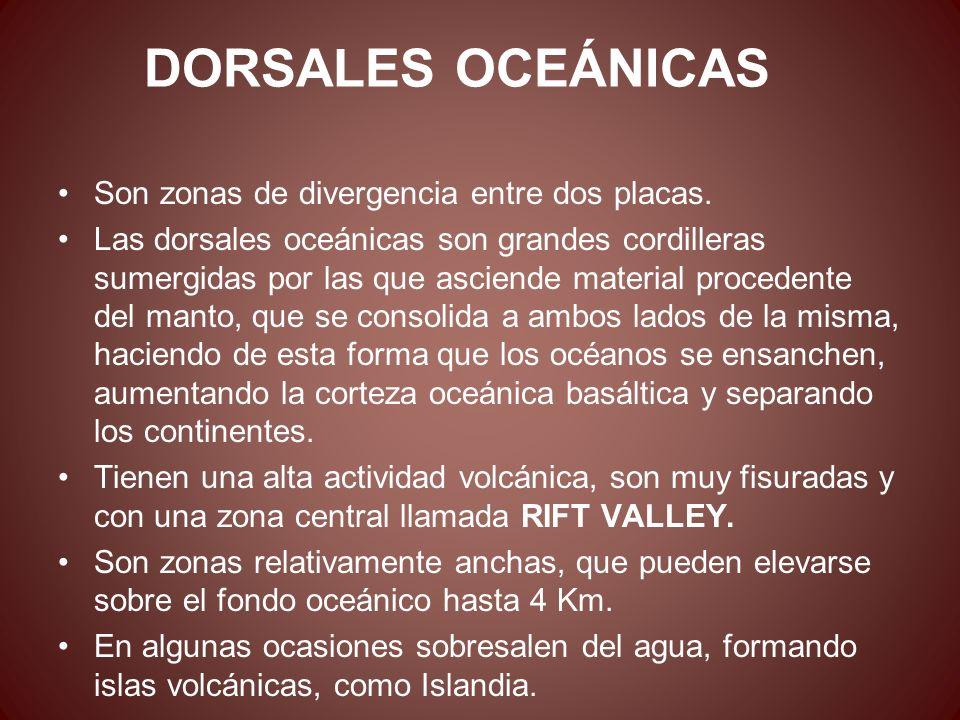 DORSALES OCEÁNICAS Son zonas de divergencia entre dos placas. Las dorsales oceánicas son grandes cordilleras sumergidas por las que asciende material