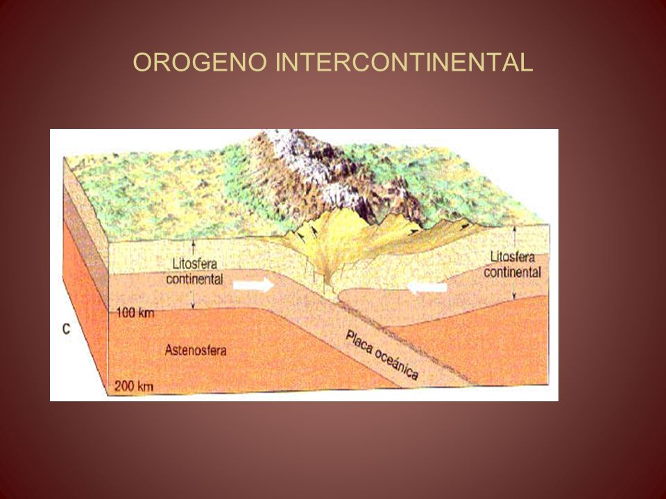OROGENO INTERCONTINENTAL