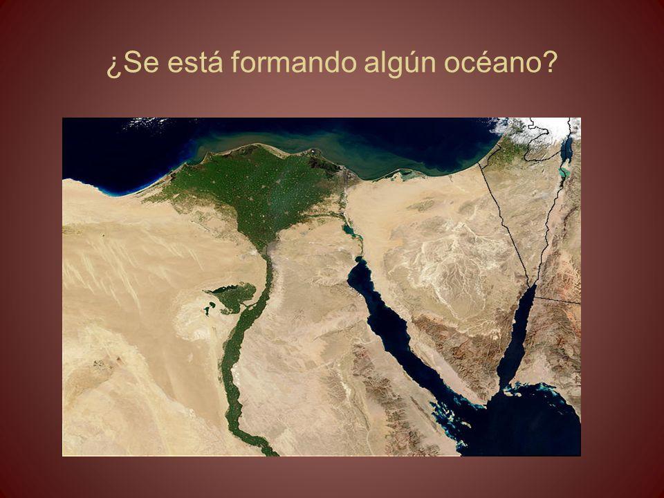 ¿Se está formando algún océano?