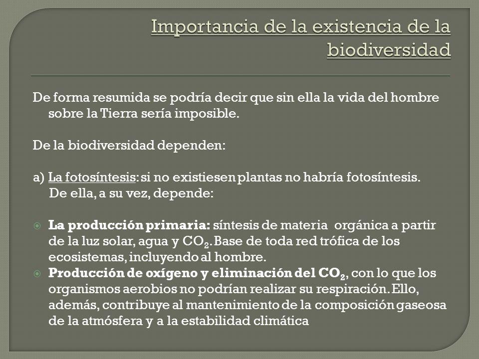 De forma resumida se podría decir que sin ella la vida del hombre sobre la Tierra sería imposible. De la biodiversidad dependen: a) La fotosíntesis: s