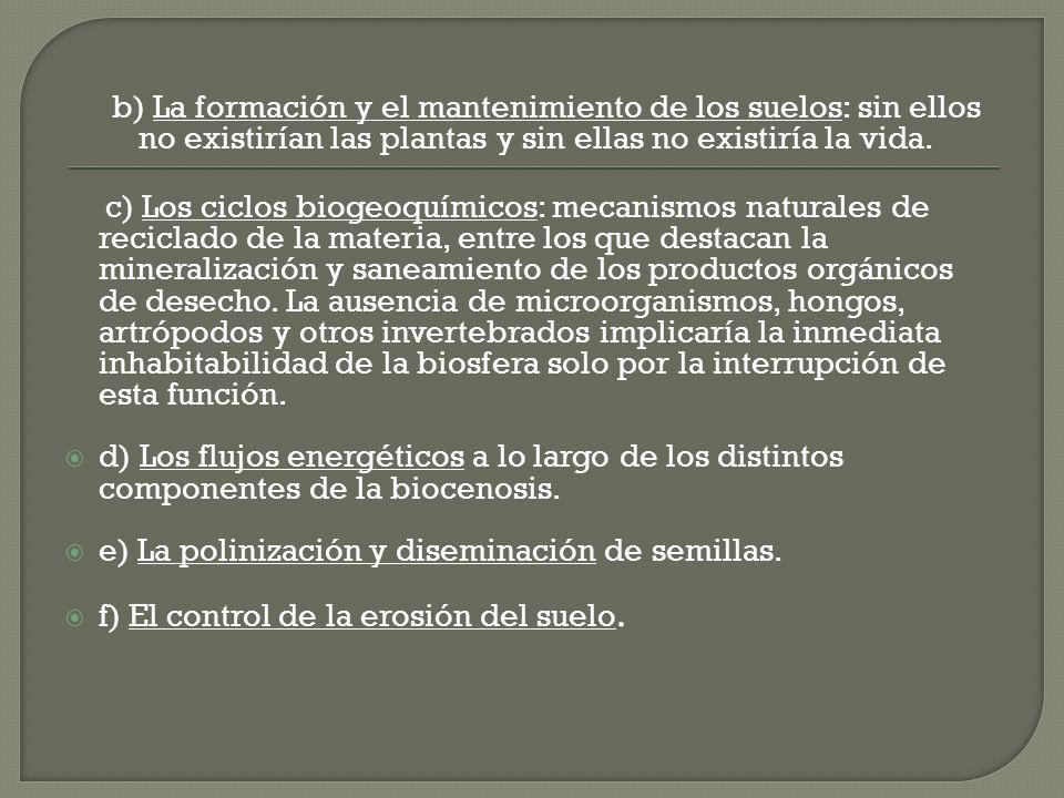 b) La formación y el mantenimiento de los suelos: sin ellos no existirían las plantas y sin ellas no existiría la vida. c) Los ciclos biogeoquímicos: