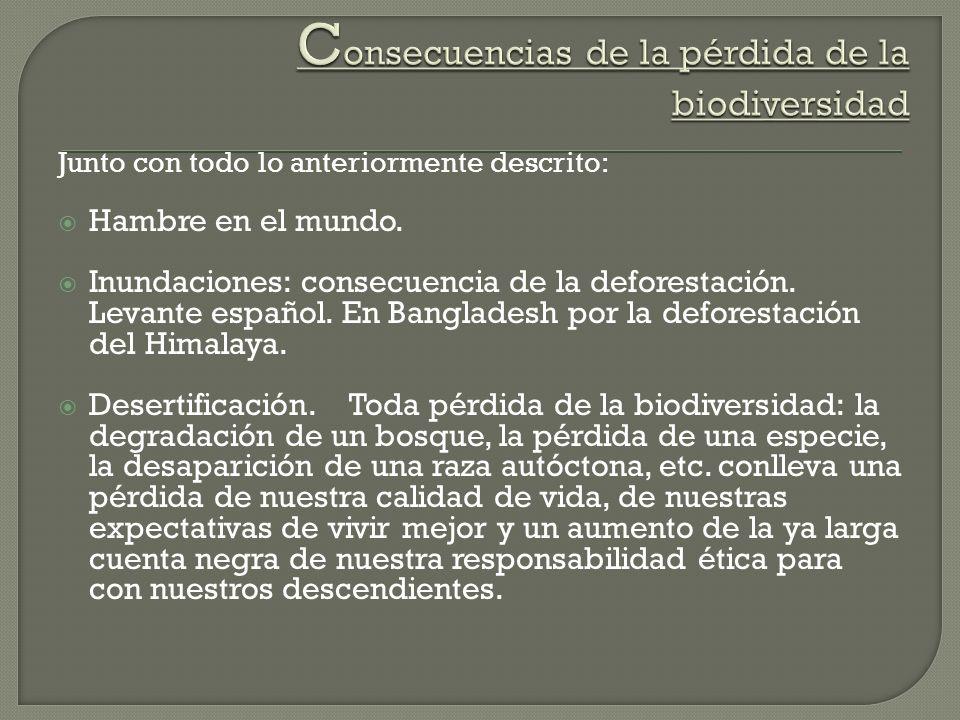 Junto con todo lo anteriormente descrito: Hambre en el mundo. Inundaciones: consecuencia de la deforestación. Levante español. En Bangladesh por la de