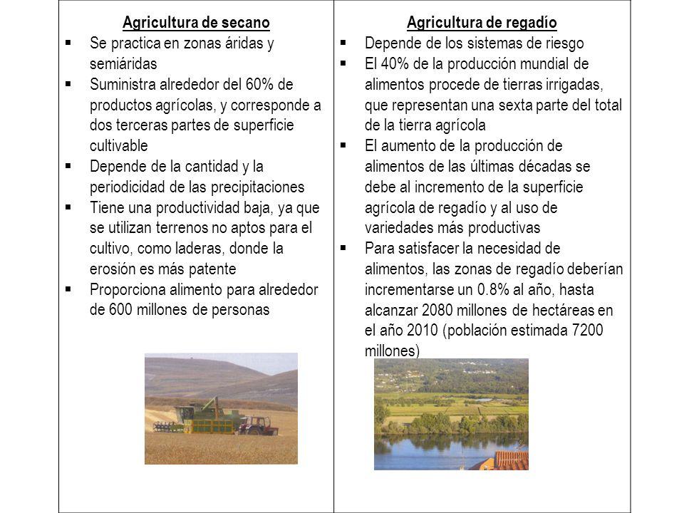 Normalmente, se dedica a un solo tipo de cultivo, del que se obtienen varias cosechas al año Se usa maquinaria agrícola para la siembra, el cultivo y