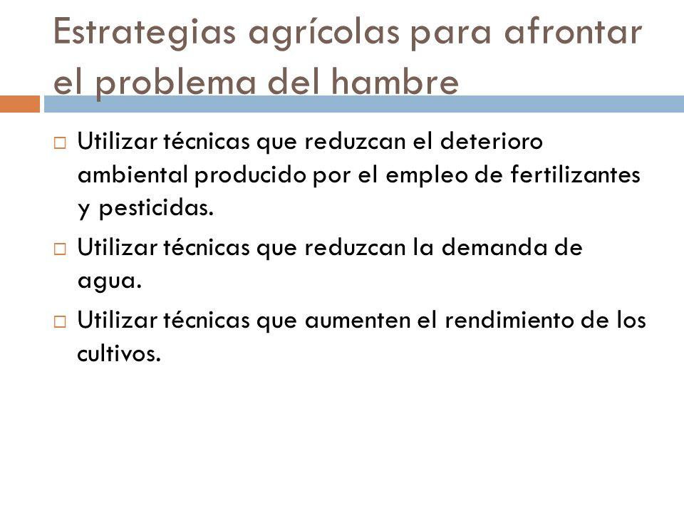Estrategias agrícolas para afrontar el problema del hambre Utilizar técnicas que reduzcan el deterioro ambiental producido por el empleo de fertilizantes y pesticidas.