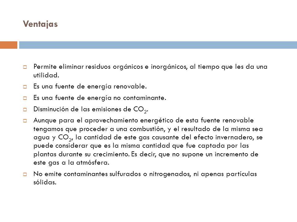 Biomasa cultivada y agrícola: Orujos Paja Cardo Árboles Maíz Biomasa a partir de residuos: Alpechín, residuo del proceso de elaboración de aceite de o