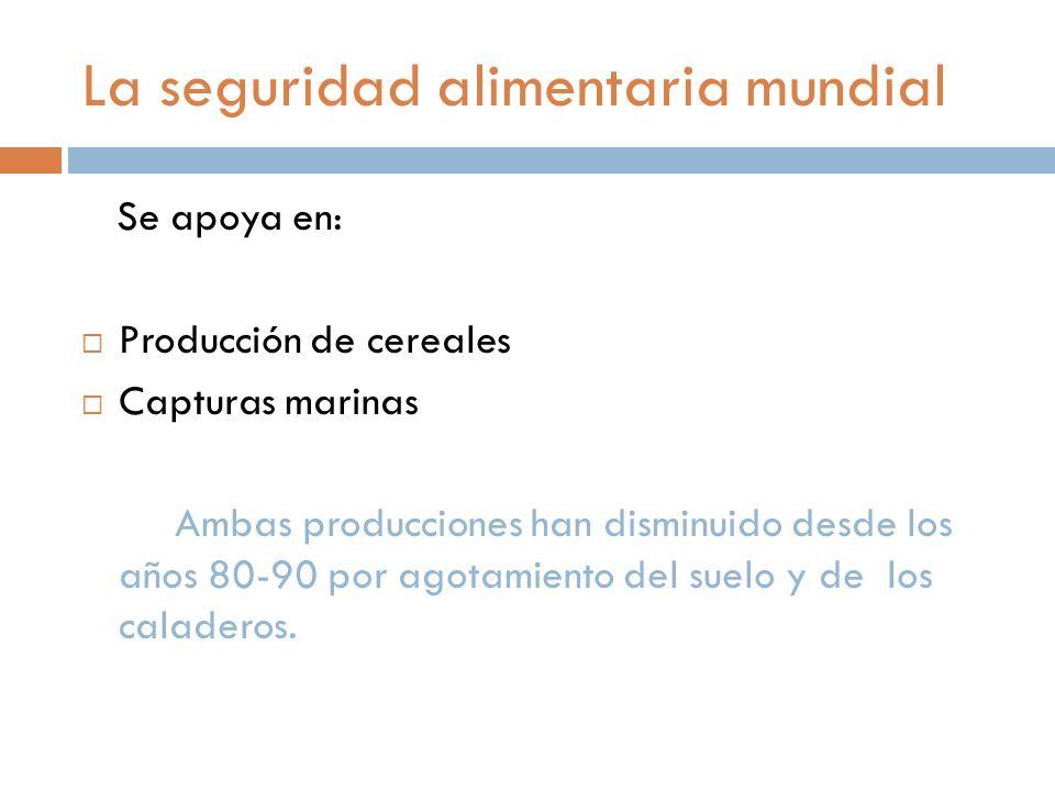 La seguridad alimentaria mundial Se apoya en: Producción de cereales Capturas marinas Ambas producciones han disminuido desde los años 80-90 por agotamiento del suelo y de los caladeros.