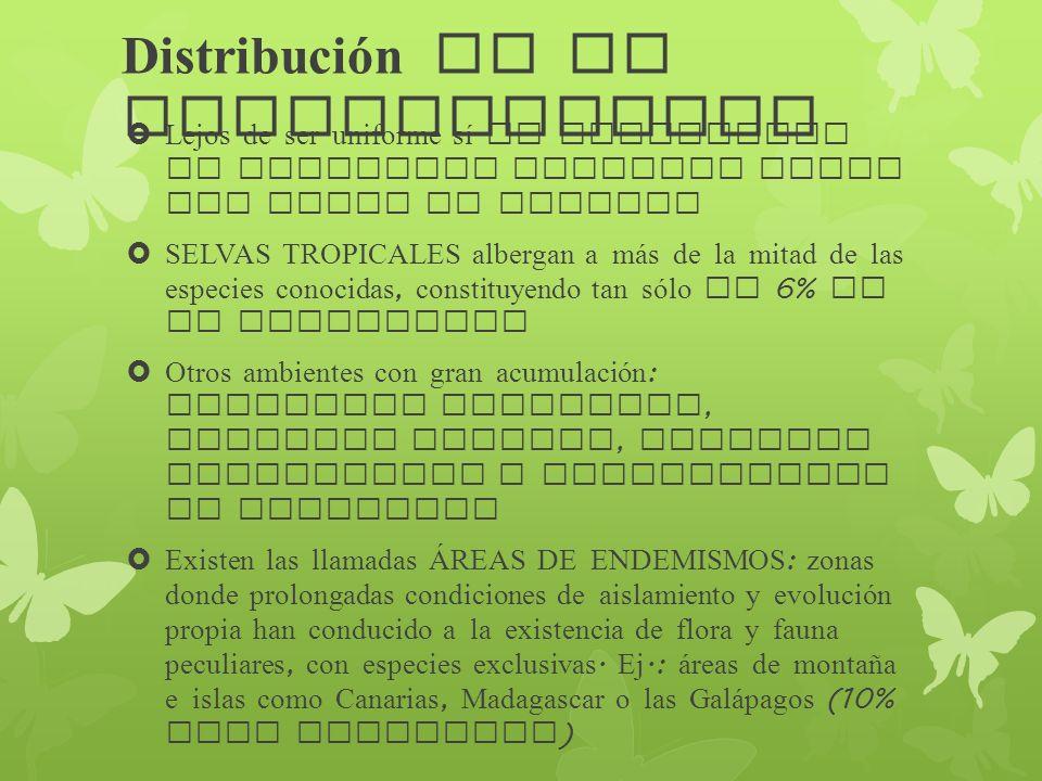 Distribución de la biodiversidad Lejos de ser uniforme sí es apreciable un gradiente positivo desde los polos al ecuador SELVAS TROPICALES albergan a