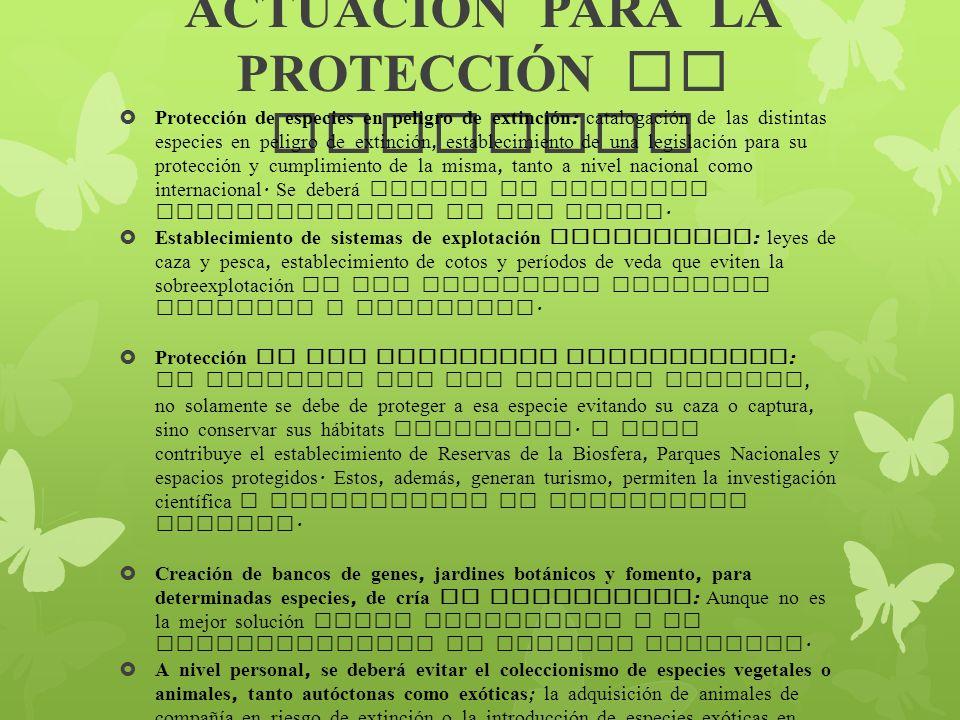 ACTUACI Ó N PARA LA PROTECCI Ó N DE ESPECIES Protección de especies en peligro de extinción : catalogación de las distintas especies en peligro de ext