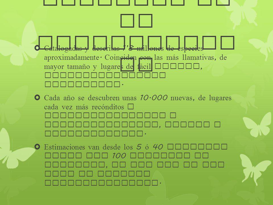 Magnitud de la biodiversid ad Catalogadas y descritas 18 millones de especies aproximadamente. Coinciden con las m á s llamativas, de mayor tamaño y l