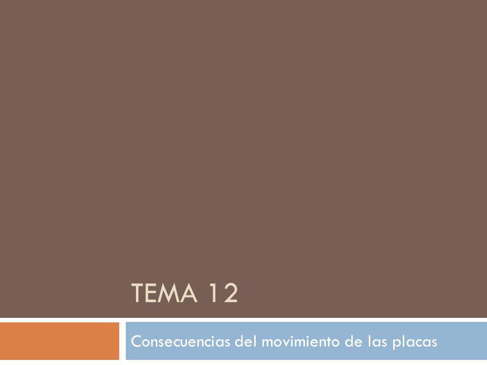 TEMA 12 Consecuencias del movimiento de las placas