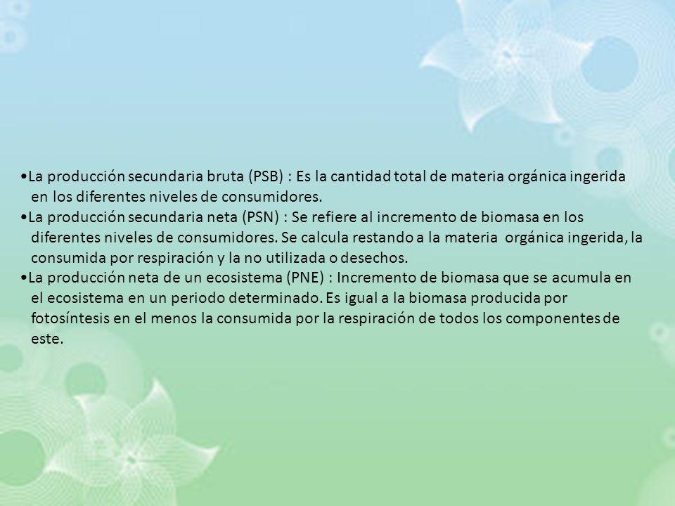 La producción secundaria bruta (PSB) : Es la cantidad total de materia orgánica ingerida en los diferentes niveles de consumidores. La producción secu