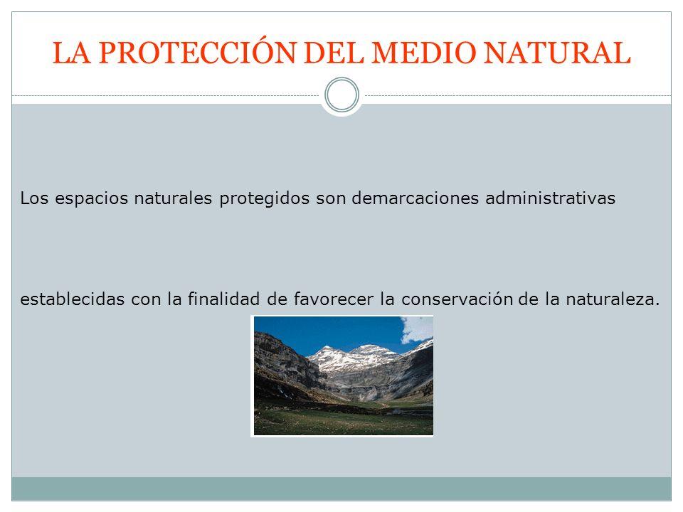 LA PROTECCIÓN DEL MEDIO NATURAL Los espacios naturales protegidos son demarcaciones administrativas establecidas con la finalidad de favorecer la cons