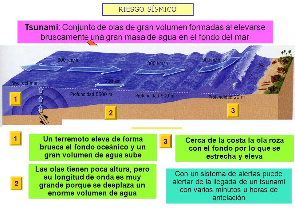 RIESGO SÍSMICO Tsunami: Conjunto de olas de gran volumen formadas al elevarse bruscamente una gran masa de agua en el fondo del mar Terremotos con epi
